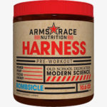 arms race harness